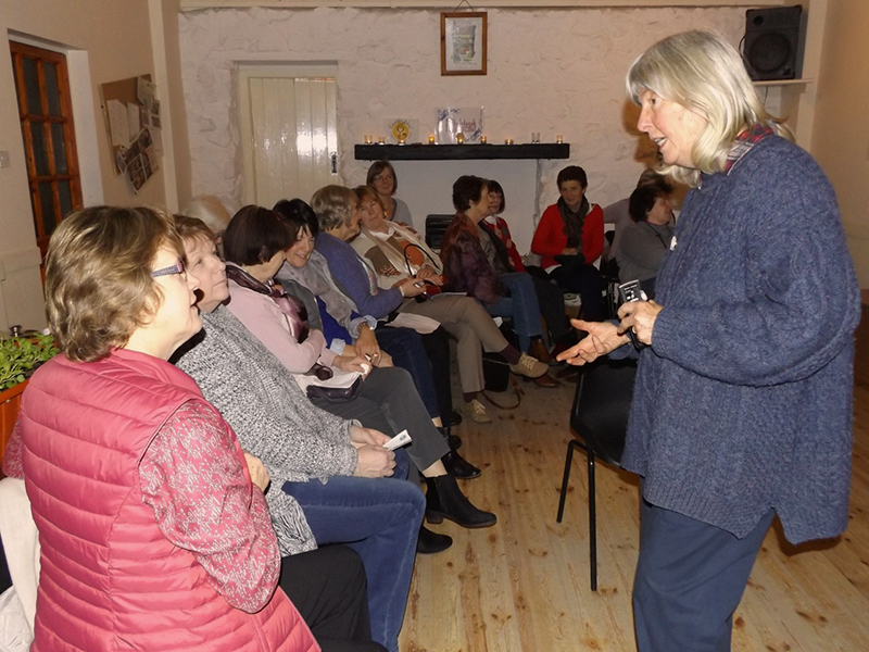 Wendy Nairn, standing, chatting to ICA Wicklow Townmembers who are seated