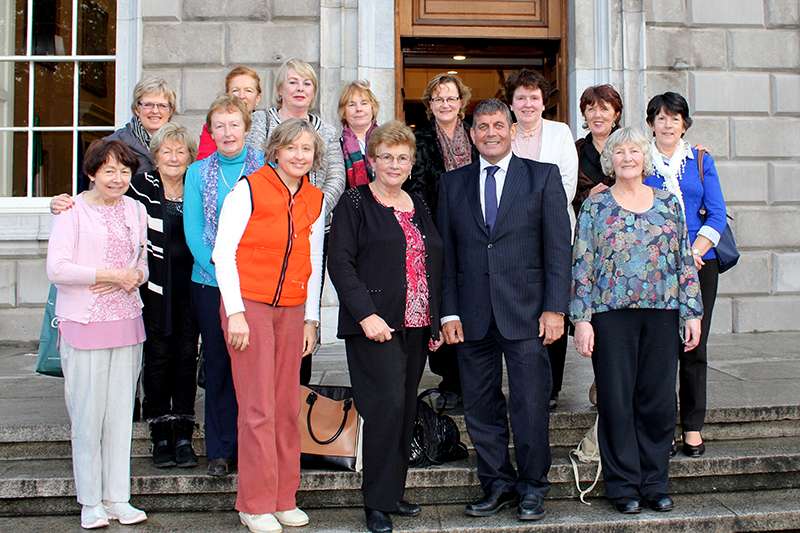 Members of ICA Wicklow Town with Andrew Doyle TD on the steps of Leinster House